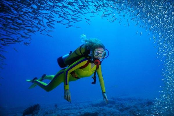 Types of Underwater Diving